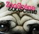 visuel-zooscene-2